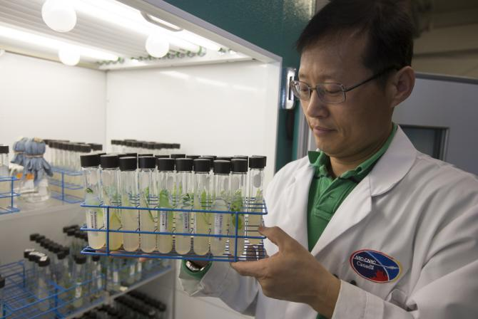 Researcher holding a tray of test tubes containing microalgae specimens